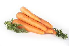 Fresh carrot Royalty Free Stock Photos