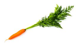 Fresh carrot Royalty Free Stock Photo