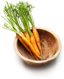 Fresh carrot Royalty Free Stock Photography