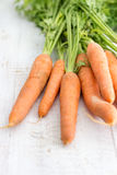 Fresh Carrot Stock Photography