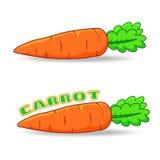 FRESH CARROT. IN CARTOON STYLE vector illustration