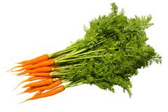 Fresh carrot fruits with green leaves. Stock Photos