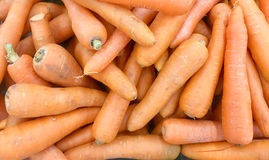 Fresh carrot in the grocery store ,Organic carrot. Food backgrou. Nd,Ubonratchathani,Thailand stock photos