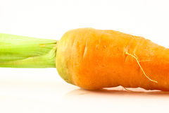 Fresh carrot isolated Stock Photos