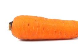 Fresh carrot Stock Photos