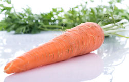 Fresh carrot with leaves Stock Photography