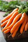 Fresh carrot over wood background Royalty Free Stock Photo