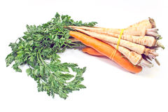 Fresh carrot and parsley with root Stock Photos
