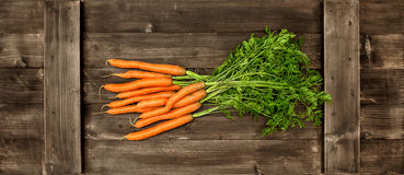 Fresh carrot ripes with green leaves. Vegetable. Food concept Royalty Free Stock Photography