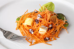 Fresh Carrot Salad. With shredded carrots, raisins, apples and a light curry yogurt dressing Royalty Free Stock Photo