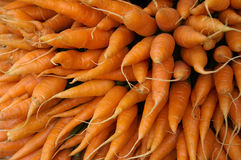 Fresh carrot texture background Royalty Free Stock Photography