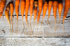 Fresh carrot vegetable laid on white wooden table Stock Images