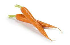 Fresh carrot Stock Photography