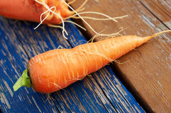 Fresh carrot on the wooden board Royalty Free Stock Photography