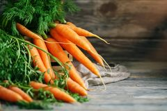 Fresh Carrot on Wooden Table in Garden. Vegetables Vitamins Keratin. Natural Organic Carrot lies on Wooden background. Rustic Style.Harvest. Selective focus Stock Images