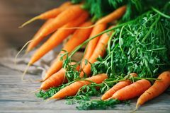 Fresh Carrot on Wooden Table in Garden. Vegetables Vitamins Keratin. Natural Organic Carrot lies on Wooden background. Rustic Style.Harvest. Selective focus Stock Photography