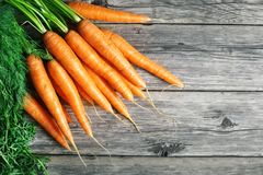 Fresh Carrot on Wooden Table in Garden. Vegetables Vitamins Keratin. Natural Organic Carrot lies on Wooden background. Top View Flat Lay. Country Village Royalty Free Stock Photo