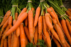 Fresh Carrots. Fresh picked bunch of organic healthy carrots at a local farmer's market stock photo