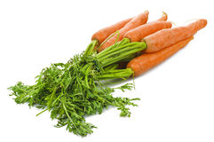 Fresh carrots. On the white Stock Photography