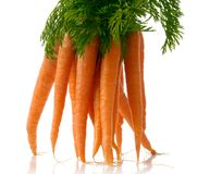 Fresh carrots. Bunch of fresh carrots isolated over white background Royalty Free Stock Photo