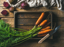 Fresh carrots and beetroots in wooden tray over rustic background. Healthy food cooking background. Vegetable ingredients. Fresh garden carrots and beetroots in Stock Photography