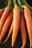 Fresh carrots. On black background Royalty Free Stock Images