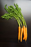 Fresh carrots on a black wooden table. Fresh carrots lie on a black wooden table Stock Photos