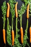 Fresh carrots on a black wooden table. Fresh carrots lie on a black wooden table Stock Photography
