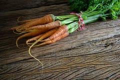 Fresh carrots bunch royalty free stock photo