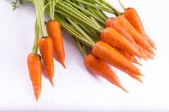 Fresh carrots in bunch Stock Images