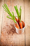 Fresh carrots bunch in white bucket Royalty Free Stock Photography