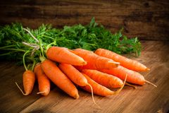 Fresh carrots bunch on wood. Fresh carrots bunch on rustic wooden background royalty free stock images