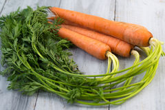 Fresh carrots bunch on wooden background Royalty Free Stock Images