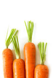 Fresh carrots - cholesterol-free Stock Images