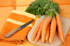 Fresh carrots on a cutting board with knife Royalty Free Stock Photo