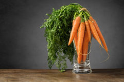 Fresh carrots in a glass vase Stock Image