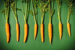 Fresh carrots on a green background. Some fresh orange carrots on a green background stock images