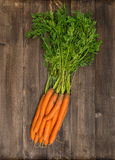 Fresh carrots with green leaves. Organic food concept Stock Photography