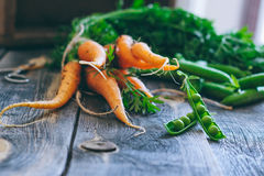 Fresh carrots with green tops and pods of peas Stock Image