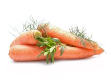 Fresh carrots and herbs. On a white background Royalty Free Stock Photography