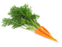 Fresh carrots isolated Royalty Free Stock Images