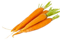 Fresh carrots isolated Royalty Free Stock Photos