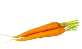 Fresh carrots isolated Royalty Free Stock Image