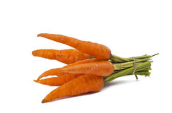 Fresh carrots isolated Stock Image