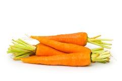 Fresh carrots isolated Stock Image