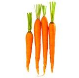 Fresh carrots isolated Stock Photos