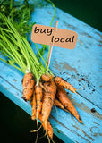 Fresh carrots with leaves Royalty Free Stock Photo