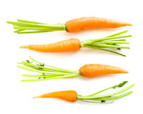 Fresh carrots. With leaves on white Royalty Free Stock Photo