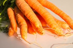 Fresh carrots with leaves, on white background.  Royalty Free Stock Image