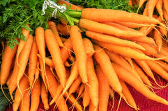 Fresh carrots at the market Stock Photography